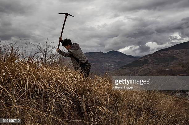 Chinese farmer digs to plant new fruit trees on a hillside at a farm on March 26 2016 in Hanyuan County Sichuan province China Heavy pesticide use on...