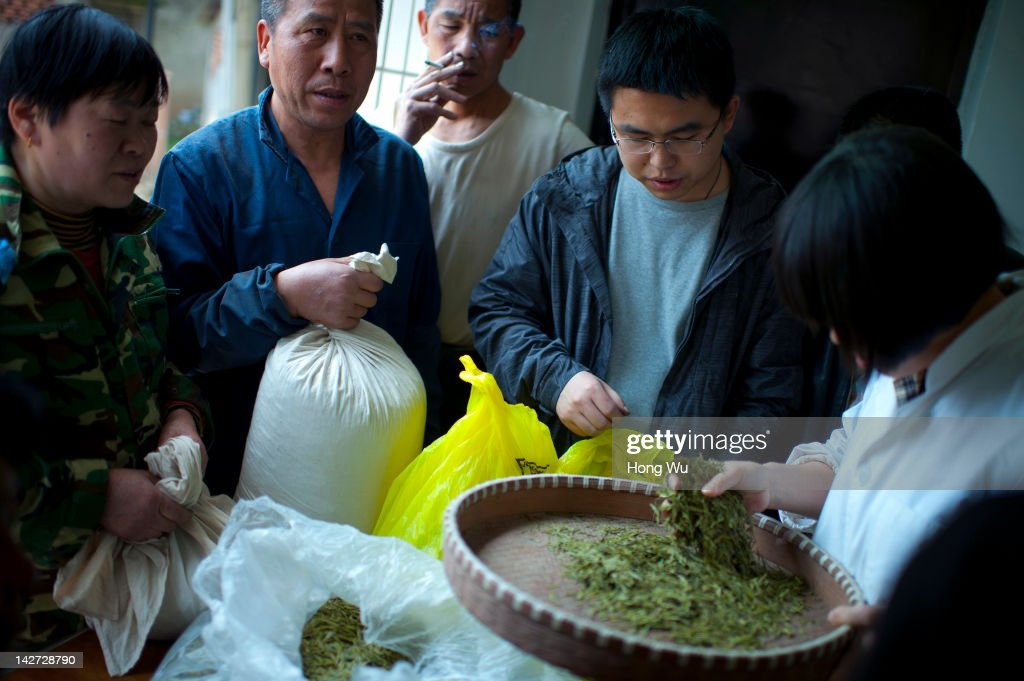 Chinese farmers hold their Longjing tea waiting to be detected and purchased by a staff member of tea factory at Wengjiashan Village on March 31, 2012 in Hangzhou, China. Longjing is a green-tea, often called Dragon Well tea. The tea is typically picked by hand, and is of a high quality, earning the title of China Famous Tea. The Longjing tea begins to pluck before Chinese traditional Qingming Festival, the 15th day from the Spring Equinox or usually occurring around April 5. Many Chinese migrant workers from Jiangsu, Anhui, Jiangxi and other neighboring provices have been employed with 80 RMB yuan(US$12.68) to 120 RMB yuan(US$ 19.03) per day to pluck fresh Longjing tea leaves for villagers in many Longjing tea production villages in the outskirts of Hangzhou. The price of Longjing tea rose in recent years which aims to become to luxury goods. A high-end Longjing tea in Hangzhou sold for 50,000 RMB yuan(US$ 7930) half a kilo in 2012, the price rose 70 times in the last 12 years.