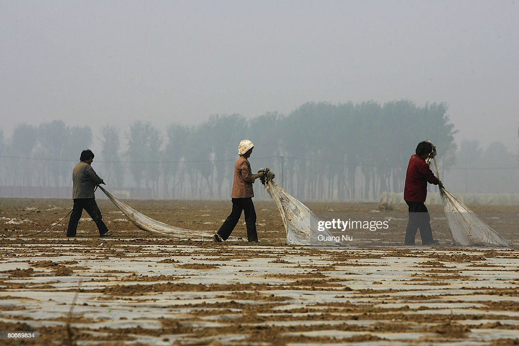 Chinese farmers work on a field on April 16, 2008 on the outskirt of Beijing, China. According to the National Development and Reform Commission, China is set to raise the minimum purchase prices of rice and wheat for the second time this year as global grain prices hit their highest peak in two decades.