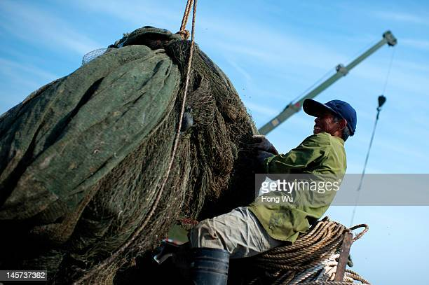 Chinese fisherman lifts his fishing net at a port on May 23 2012 in Qingdao China Marine fishery resources in China becomes less and lees due to...