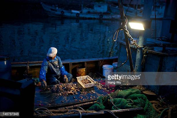 Chinese fisherman sorts out fish products on May 28 2012 in Qingdao China Marine fishery resources in China becomes less and lees due to excessive...