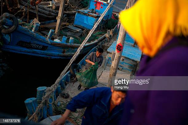 Chinese fishermen carry fish on fishing boat at a port on May 21 2012 in Qingdao China Marine fishery resources in China becomes less and lees due to...