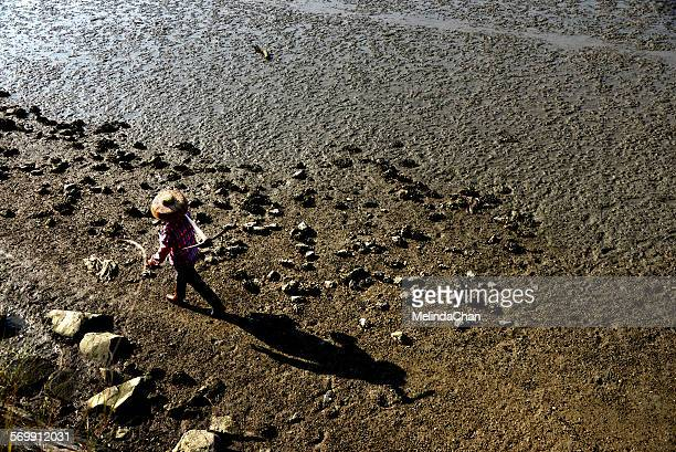 Chinese fishing lady walking on the beach