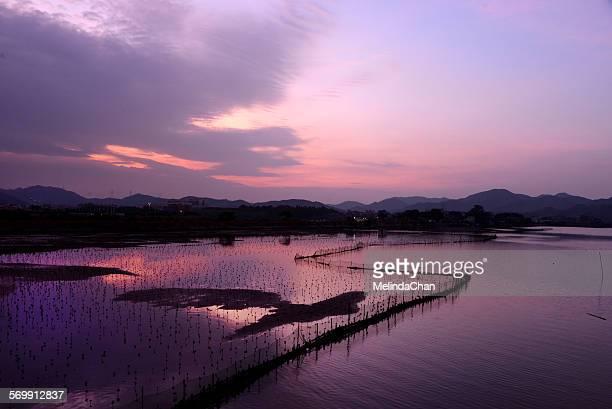 Chinese fishing village in dawn