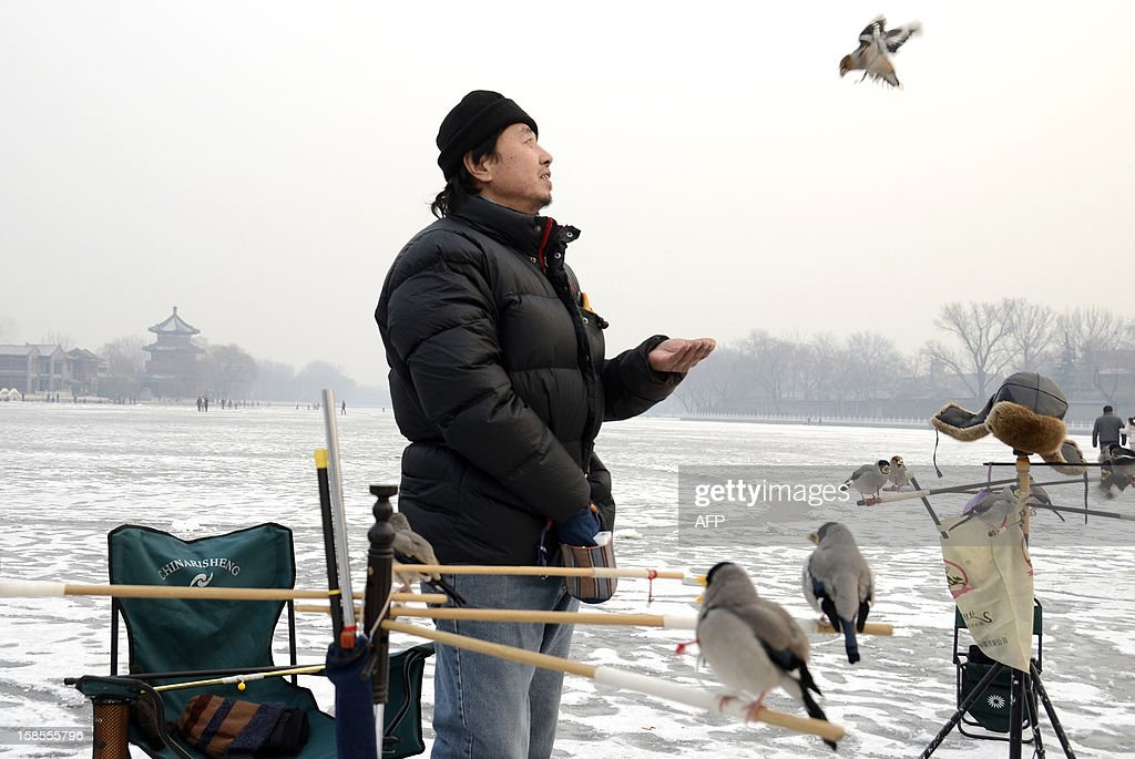 A Chinese man feeds his pet bird on a frozen lake in Beijing on December 19, 2012. China will allow transit passengers from 45 countries including the US, Canada and all members of the EU to spend up to 72 hours in Beijing without a visa from January 2013, city authorities said. AFP PHOTO / WANG ZHAO