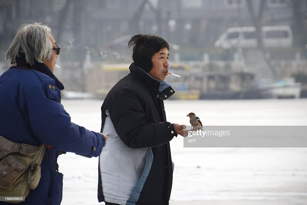 A Chinese man (C) makes his way on a frozen lake with his pet bird in his hand in Beijing on December 19, 2012. China will allow transit passengers from 45 countries including the US, Canada and all members of the EU to spend up to 72 hours in Beijing without a visa from January 2013, city authorities said. AFP PHOTO / WANG ZHAO