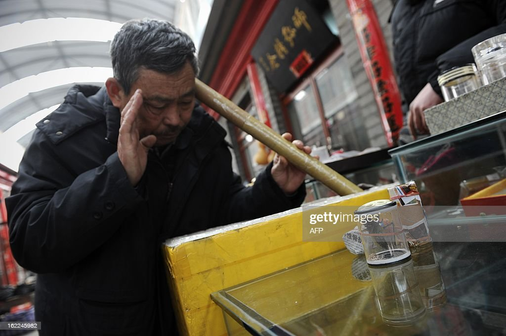 A Chinese man selects a Katydid, an insect also known as bush-crickets, with a paper tube by listening to its song at a market in Beijing on February 21, 2013. Raising Katydid is a tranditional hobby in the capital and dates back from Qing dynasty. AFP PHOTO / WANG ZHAO