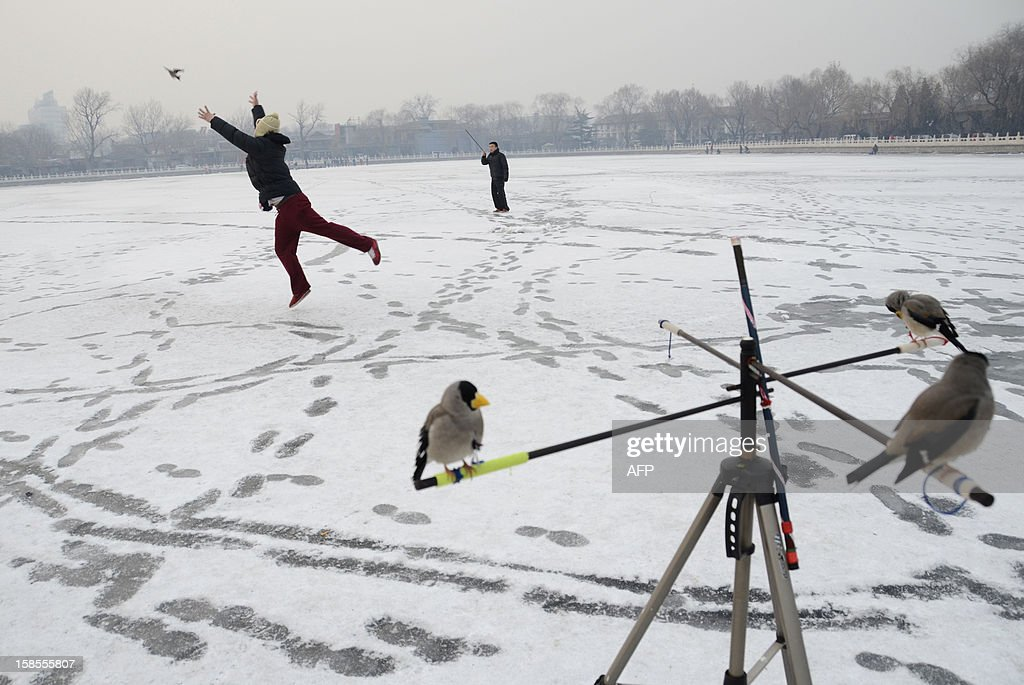 A chinese man tosses a pet bird into the air as he plays a game on a frozen lake in Beijing on December 19, 2012. 19, 2012. China will allow transit passengers from 45 countries including the US, Canada and all members of the EU to spend up to 72 hours in Beijing without a visa from January 2013, city authorities said. AFP PHOTO / WANG ZHAO