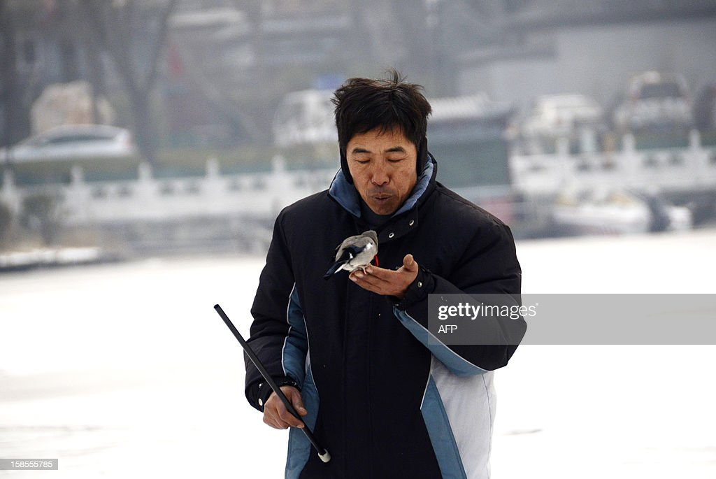 A Chinese man whistles at his pet birds on a frozen lake in Beijing on December 19, 2012. China will allow transit passengers from 45 countries including the US, Canada and all members of the EU to spend up to 72 hours in Beijing without a visa from January 2013, city authorities said. AFP PHOTO / WANG ZHAO