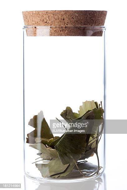 Chinese medicinal herb ginkgo leaves in glass bottle