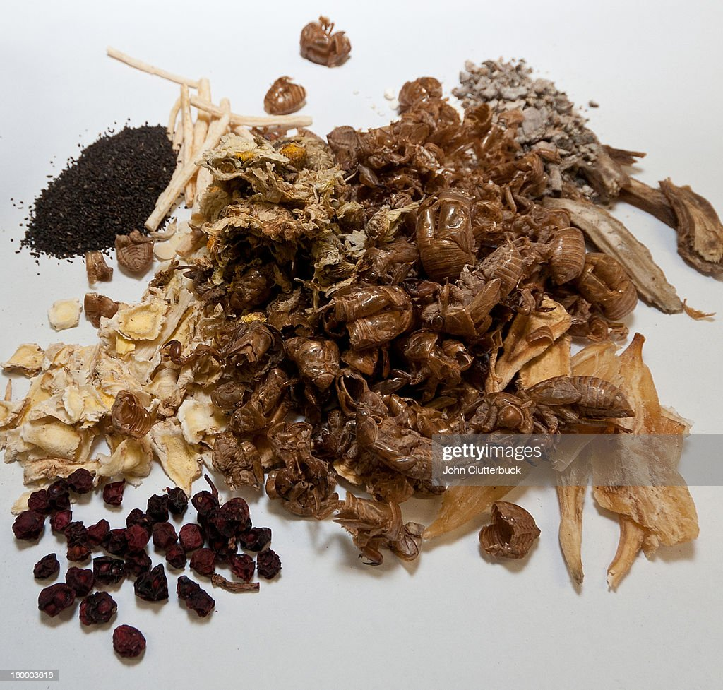 Chinese medicinal herd and insects : Stock Photo