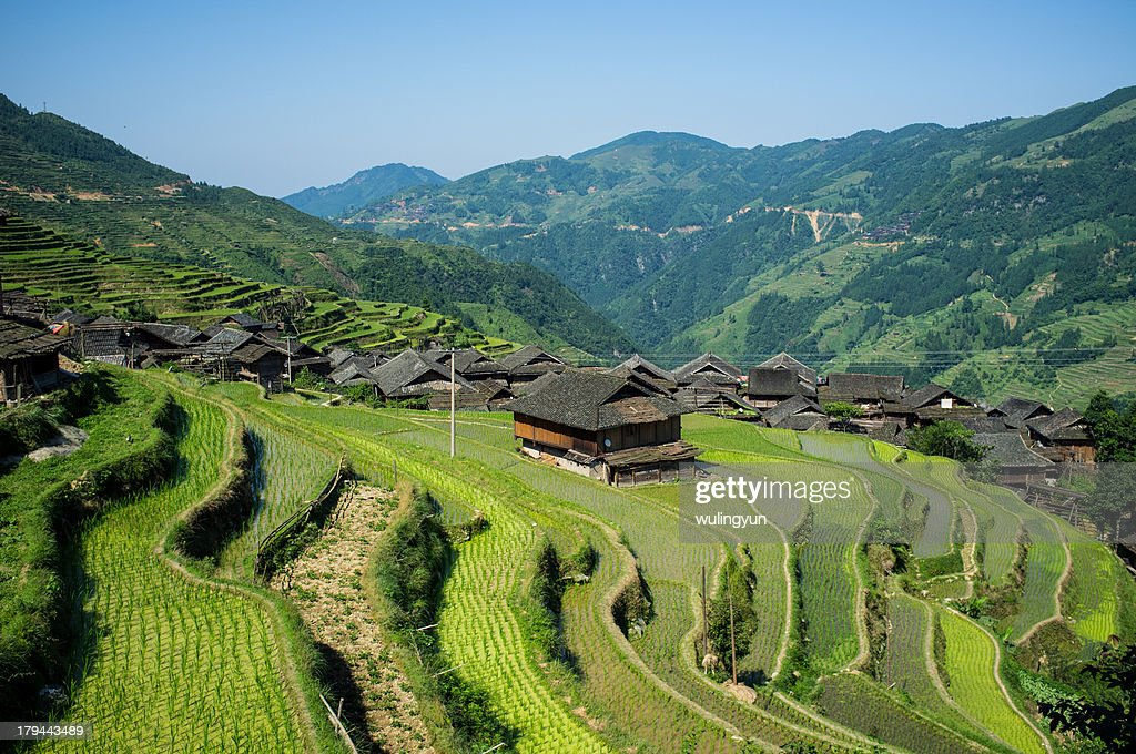 Chinese Miao village in the rice terraces,Guizhou
