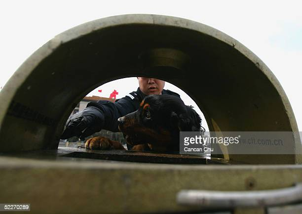 Chinese polilceman directs a dog to search a rubbish bin during a security sweep of Tiananmen Square before the opening ceremony of the CPPCC at the...