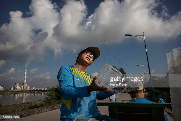 Chinese researcher Gan Renxian rides in a cart as he releases adult mosquitos on Shazai Island where the Sun YatSen UniversityMichigan University...