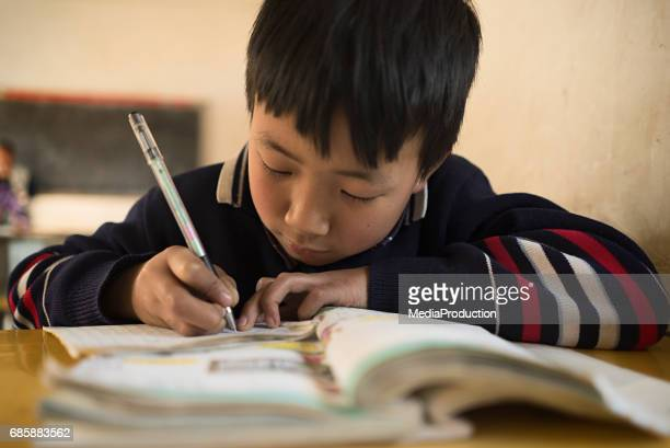Chinese school child writing  in classroom