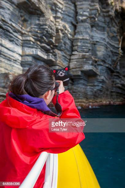 Chinese tourist takes a photograph of a stuffed Tasmanian Devil on the Pennicott Wilderness Journey cruise of the Tasman Peninsula coast in Tasmania