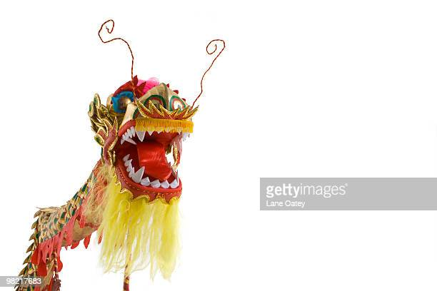 Chinese traditional lion dancing
