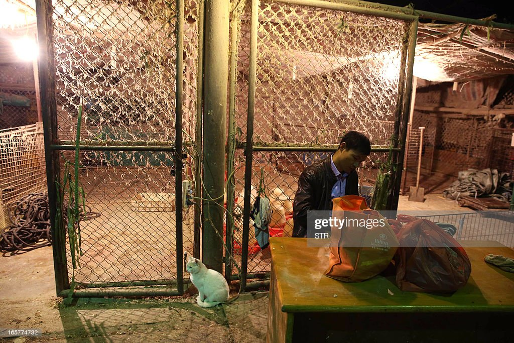 A Chinese vendor sits beside an empty poultry cage at the Huhuai wholesale agricultural market in Shanghai on April 6, 2013, a day after a total of 20,536 chickens, ducks, geese and pigeons had been slaughtered. Shanghai ordered all live poultry markets in the city closed after culling more than 20,000 birds to curb the spread of the H7N9 flu virus, which has killed six people in China. CHINA OUT AFP PHOTO