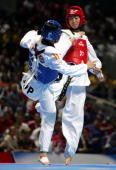 Chinese Wang Ying fights against Spanish Brigitte Yague during their women's under 51 kg final match at the Taekwondo World Championships in Madrid...