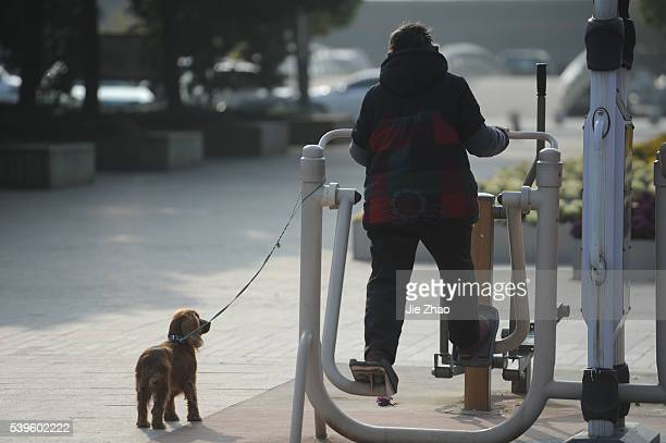 A Chinese woman does exercise with a dog in a park in Hefei Anhui province east China on 7th March 2015 China has lowered its annual GDP growth...