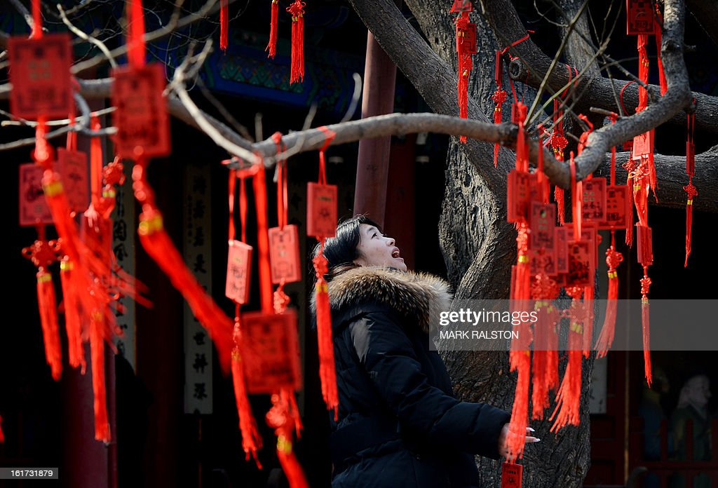 A Chinese woman prepares to attach a Buddhist blessing tablet with wishes for the new year written on it to a sacred tree at the Dongyue Temple in Beijing on February 15, 2013. China is welcoming the Year of the Snake and tradition proclaims that a snake in the house is a good sign because it means the family will not starve and children born in the Year of the Snake will be cunning, intelligent and wise. AFP PHOTO/Mark RALSTON