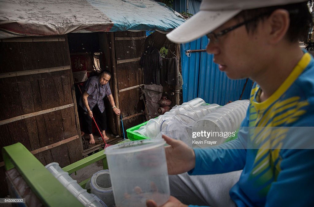 Chinese woman sweeps in front of her house as researcher Yang Gangyong releases adult mosquitos on Shazai Island where the Sun YatSen...