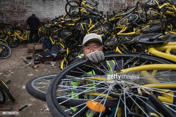 Chinese worker from the bike share company Ofo Inc unloads bicycles collected from the streets at a repair depot for the company on March 30 2017 in...