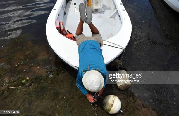 Chip Johnston an employee at Belle Haven Marina works on detaching a mooring on Wednesday June 21 2017 in Alexandria VA Wednesday was the summer...