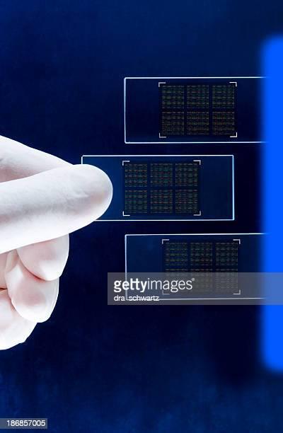 DNA Chip nanotechnology