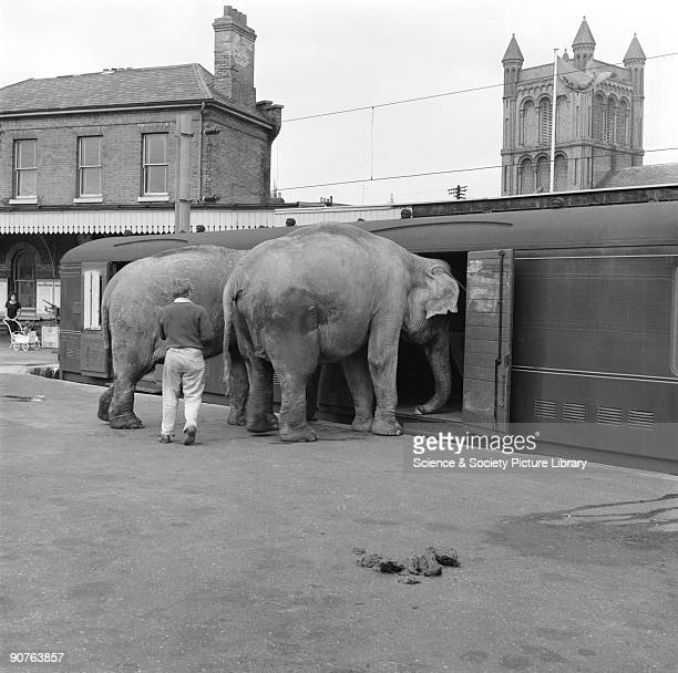 Chipperfield Circus Photos Et Images De Collection Getty