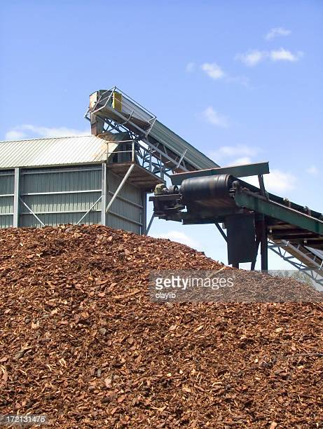 chipping: woodchip industry