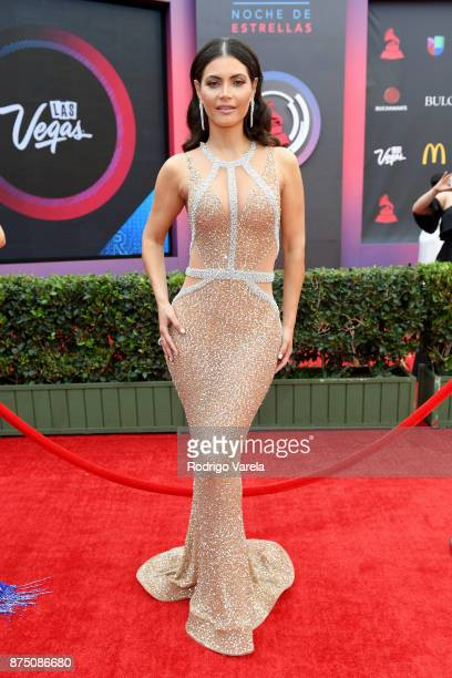 Chiqui Delgado attends The 18th Annual Latin Grammy Awards at MGM Grand Garden Arena on November 16 2017 in Las Vegas Nevada