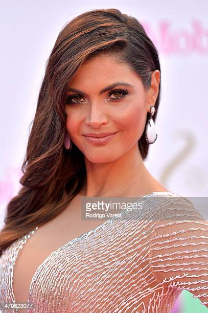 Chiquinquira Delgado attends Premio Lo Nuestro a la Musica Latina 2014 at American Airlines Arena on February 20 2014 in Miami Florida