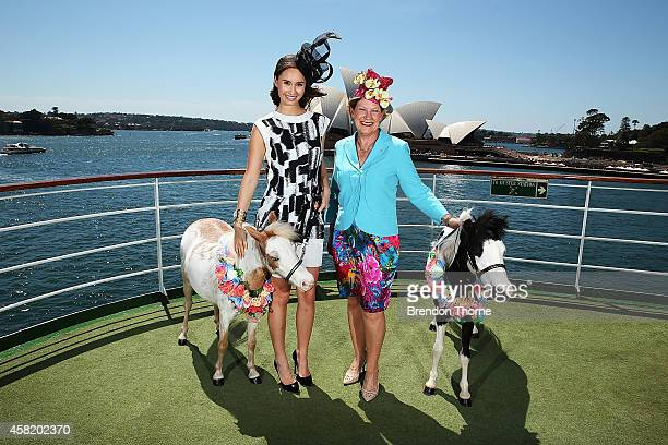 Chloe Moo and PO Cruises CEO Ann Sherry pose with Cranage Miniature Horses aboard the Pacific Pearl on November 1 2014 in Sydney Australia In the...