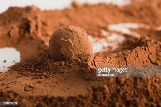 Chocolate ball in cocoa powder