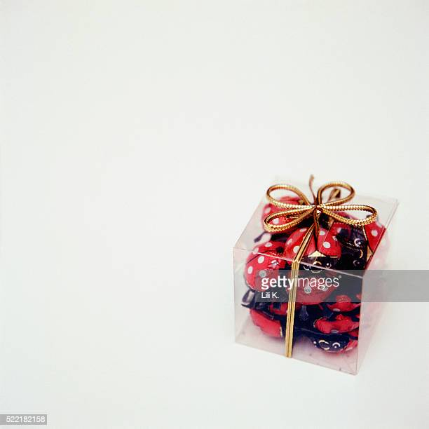 Chocolate bugs in present box