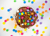 USA, Carolina, Mecklenburg County, Chocolate cupcake covered with multicolored sprinkles