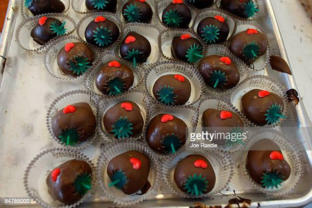 Chocolate dipped strawberries are ready to be consumed at Schakolad Chocolate Factory on February 13 2009 in Davie Florida Chocolate flowers and...