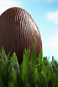 Chocolate Easter egg in grass, close-up (focus on egg)
