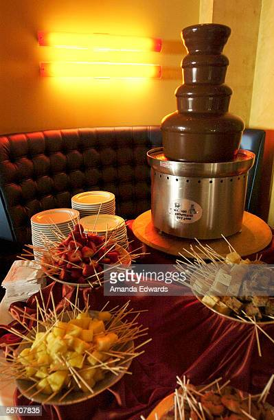 A chocolate fountain sits on display at the Broadcast Film Critics Association Annual Summer Cocktail Bash at Vert in the Hollywood and Highland...
