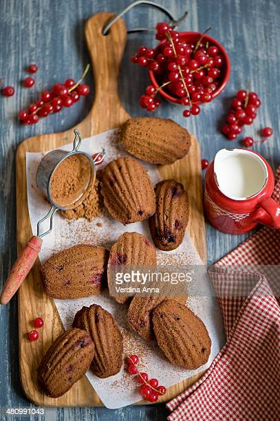 Chocolate madeleines with cranberry