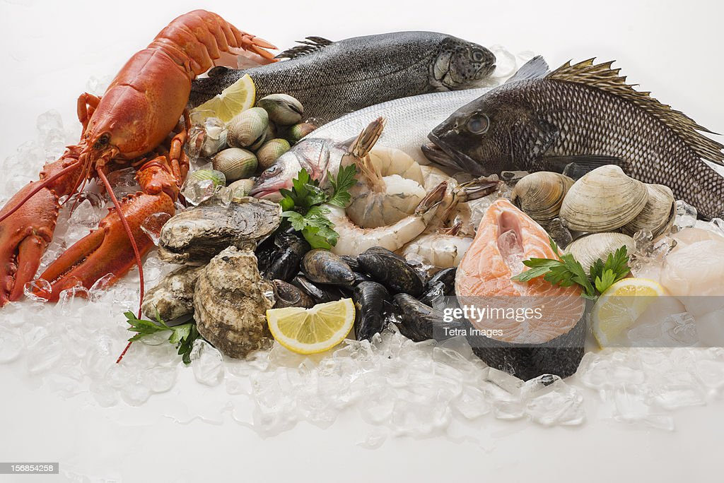 Choice of seafood, Studio shot