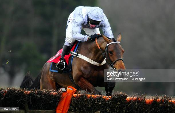 Chomba Womba and Mick Fitzgerald jump the last to win The partybetscom Anne Boleyn Mares only Hurdle Races at Sandown Park Racecourse Surrey