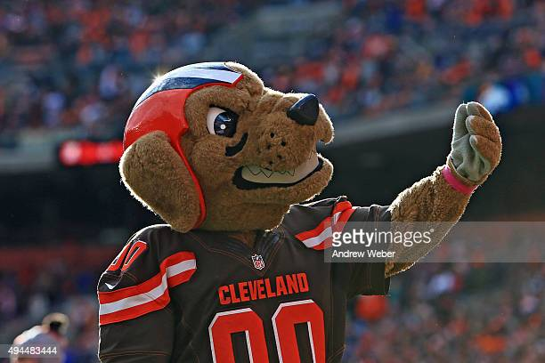 Chomps mascot of the Cleveland Browns against the Denver Broncos at Cleveland Browns Stadium on October 18 2015 in Cleveland Ohio Broncos defeated...