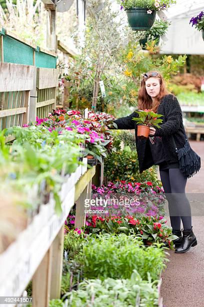 Choosing flowering plants