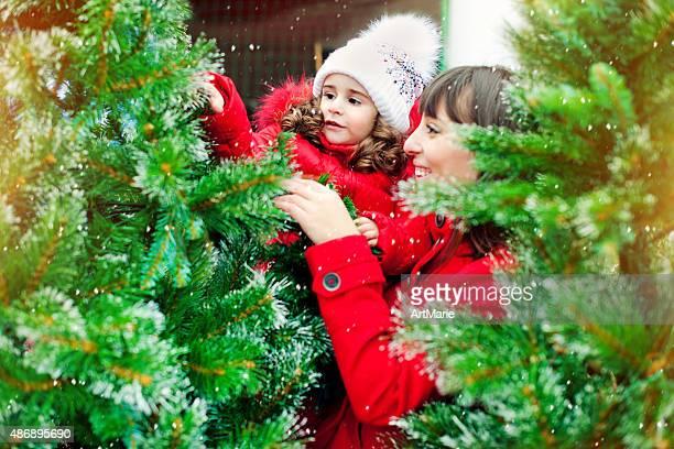 クリスマスツリーの選択