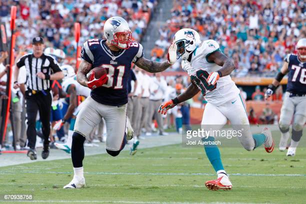 Chris Clemons of the Miami Dolphins defends against Aaron Hernandez of the New England Patriots on December 2 2012 at Sun Life Stadium in Miami...