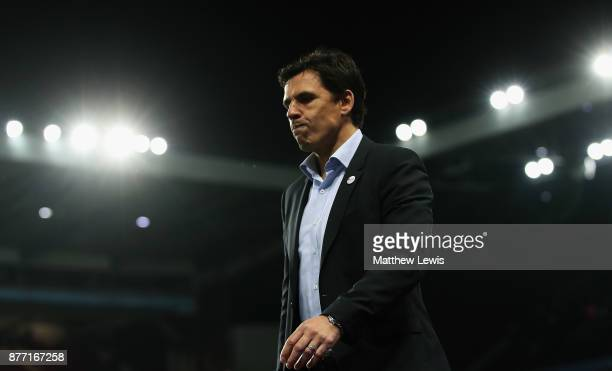 Chris Coleman manager of Sunderland looks on during the Sky Bet Championship match between Aston Villa and Sunderland at Villa Park on November 21...