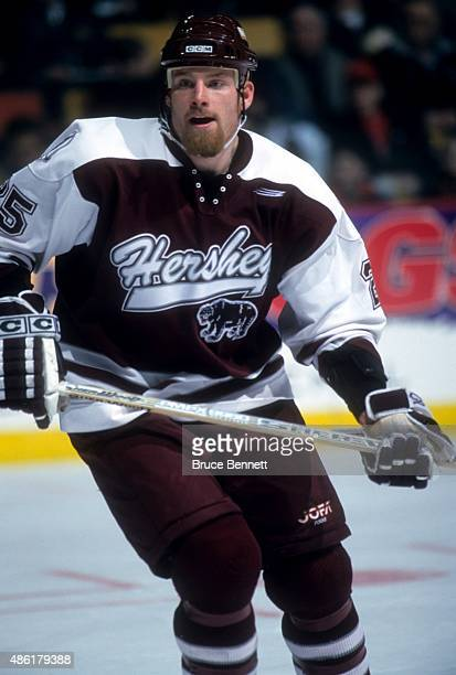 Chris Dingman of the Hershey Bears skates on the ice during an AHL game in March 1999