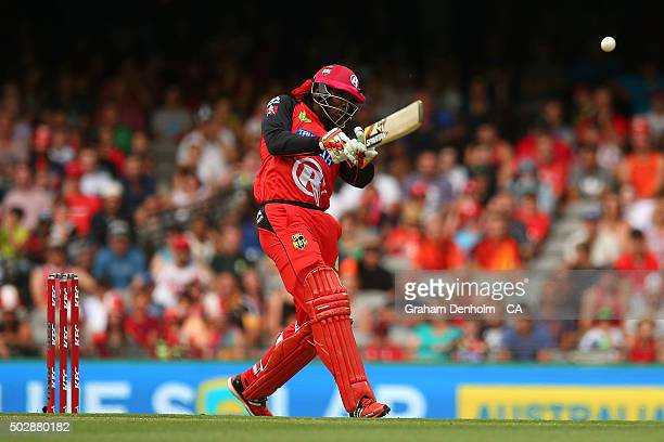 Chris Gayle of the Renegades plays a shot during the Big Bash League match between the Melbourne Renegades and the Perth Scorchers at Etihad Stadium...